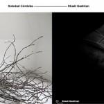 Prensa-Soledad-Shadi-1-1024x387